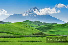 Cultural landscape and Mount Egmont - Oceania, New Zealand, North Island, Taranaki, Stratford, Forgotten World Highway, Toko ...
