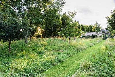 A mown path through long grasses planted with trees leads towards the Walled Garden at Broadwoodside, Gifford, East Lothian i...