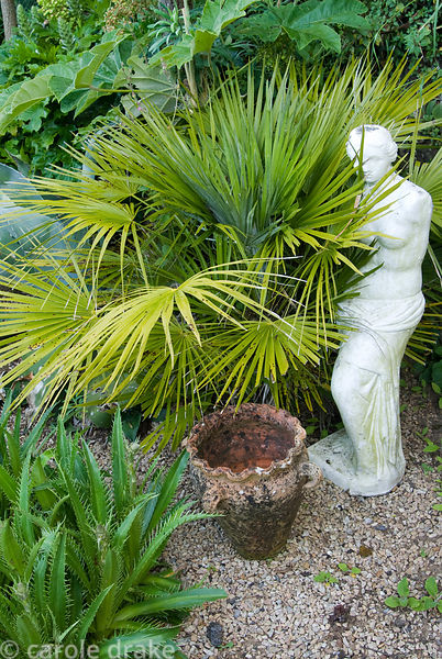 Classical statue beside exotic foliage of palms and eryngiums. Ednovean Farm, Marazion, Cornwall, UK