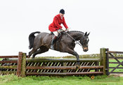 Andrew Osborne jumping a fence at Stone Lodge. The Cottesmore Hunt at Vickers Farm 12/3
