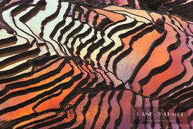 Rice terraces  - Asia, China, Yunnan, Yuanyang, Tigermouth - digital - Masterfile image 700-01042389