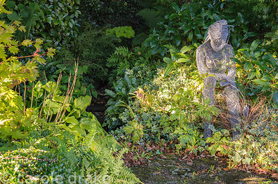 Chicken wire sculpture of a seated female figure by Derek Kinzett surrounded by foliage plants including Viburnum davidii, va...