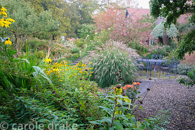 Dining area in the back garden framed by Miscanthus sinensis 'Yakushima Dwarf, pink berried Sorbus rosea 'Rosiness' and Rosa ...