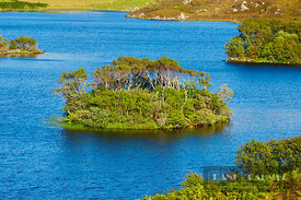 Island on lake - Europe, United Kingdom, Scotland, Sutherland, Kylesku, Drumbeg (Highlands, Northwest Highlands) - digital