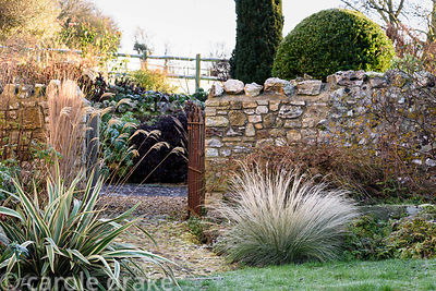 Grasses including Miscanthus nepalensis, phormium and acer frame a gate leading into the courtyard garden