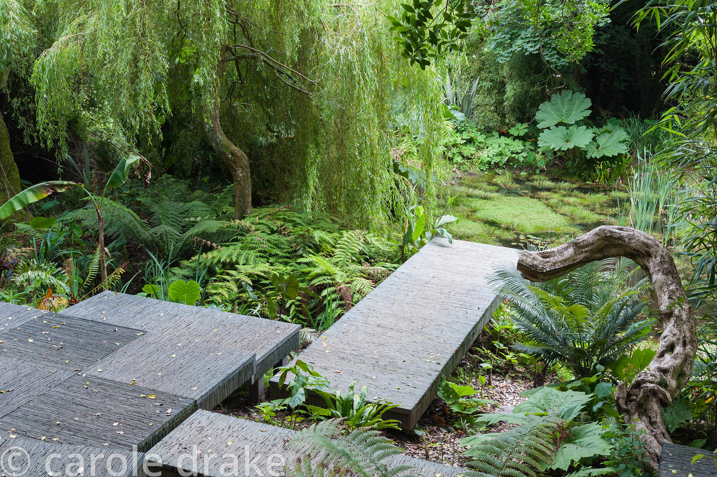 Adaptation of a Chelsea gold  medal winning garden by Darren Hawkes, reconfigured to give access to an area of the garden ful...