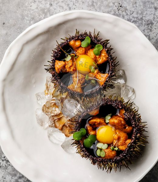 Fresh opened Sea Urchins with quail egg and soy sauce on plate on gray background