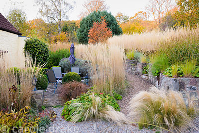 Terraced sloping front garden at Barn House, Chepstow in October with Stipa tenuissima in the foreground, small Eragrostis cu...