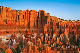 Erosion landscape in Bryce Canyon from below Bryce Point - North America, USA, Utah, Garfield, Bryce Canyon, Bryce Point, Bry...