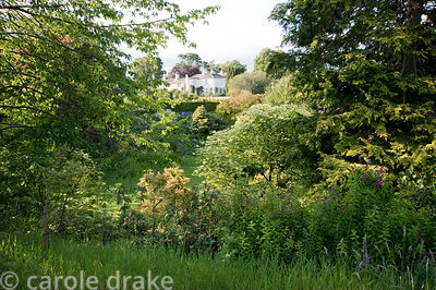 View of the house from woodland walk. Mindrum, nr Cornhill on Tweed, Northumberland, UK
