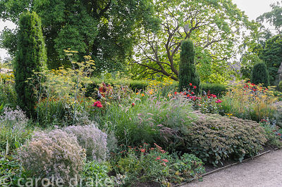 Hot border in the East Garden planted with a mix of herbaceous perennials and grasses including fennel, dahlias, bananas, Phl...