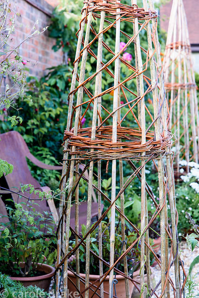 Wigwam support of bamboo canes with willow woven through them at Malthouse Farm, Hassocks, Sussex