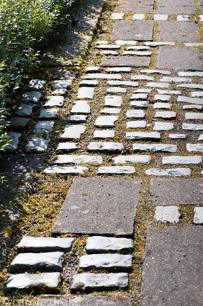 Paving combining stone setts with paving slabs for decorative effect.