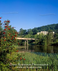Image - University of Stirling campus and Airthrey Loch, Stirling