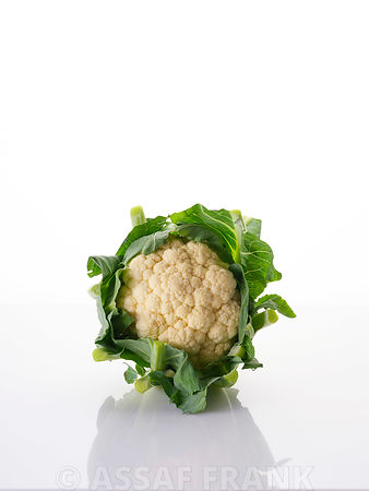 Cauliflower on white background