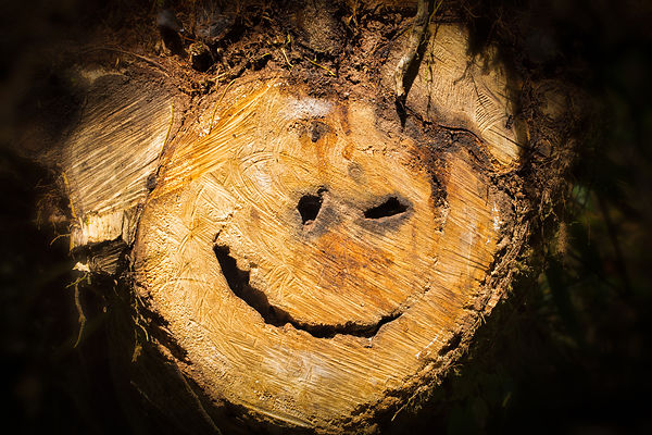 Forest Smiley