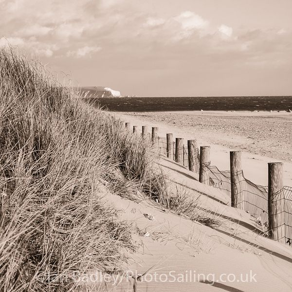 Dunes, fence and Needles