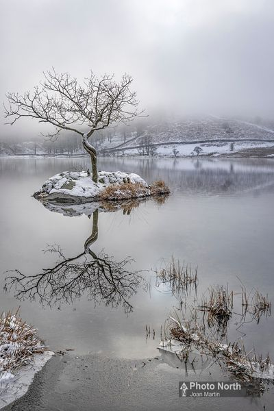 RYDAL 13B - Winter morning, Rydal Water