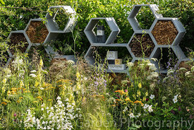 The Urban Pollinator garden designed by Caitlin McLaughlin at the RHS Hampton Court Palace Garden Festival 2019. Sponsor: War...