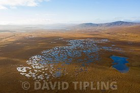 Aerial view of Peatland pools in blanket bog at Forsinard RSPB Reserve, Flow Country, Northern Scotland, autumn.