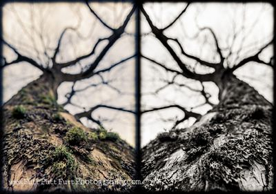 2014-11-01_Padley_Gorge_Meet-up_255_as_Smart_Object-1_1x2