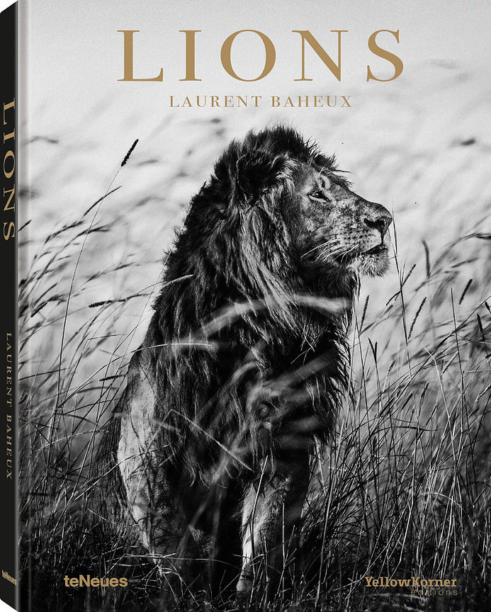 Cover_Lions_Laurent_Baheux_teNeues