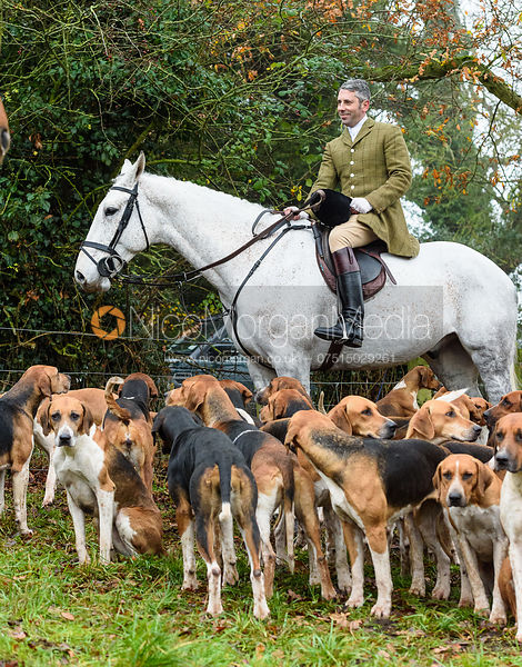 Richard Tyacke and the Wynnstay hounds At the meet. The visit of the Wynnstay Hounds to the Cottesmore 27/11
