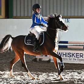 19/01/2020 - Class 7 - Unaffiliated showjumping - Brook Farm training centre