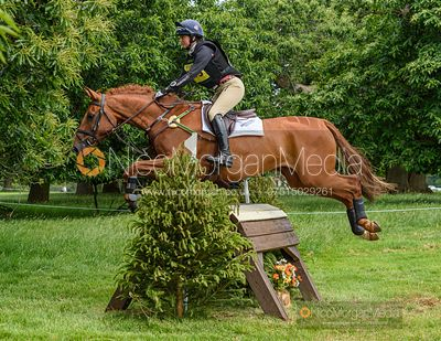 Piggy French and HIGHDOWN MARCH - Upton House Horse Trials 2019.