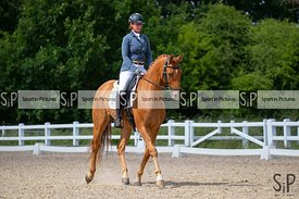 Arena 2. Pet Plan Area Dressage Fesival 2019. British Dressage. BD. Brook Farm Equestrian Centre. Stapleford Abbotts. Essex. ...