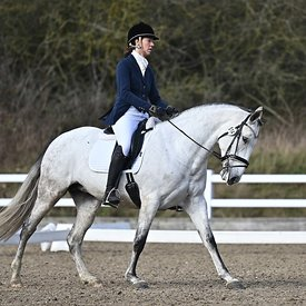 14/02/2020 - Class 5 - British dressage - Brook Farm training centre - UK