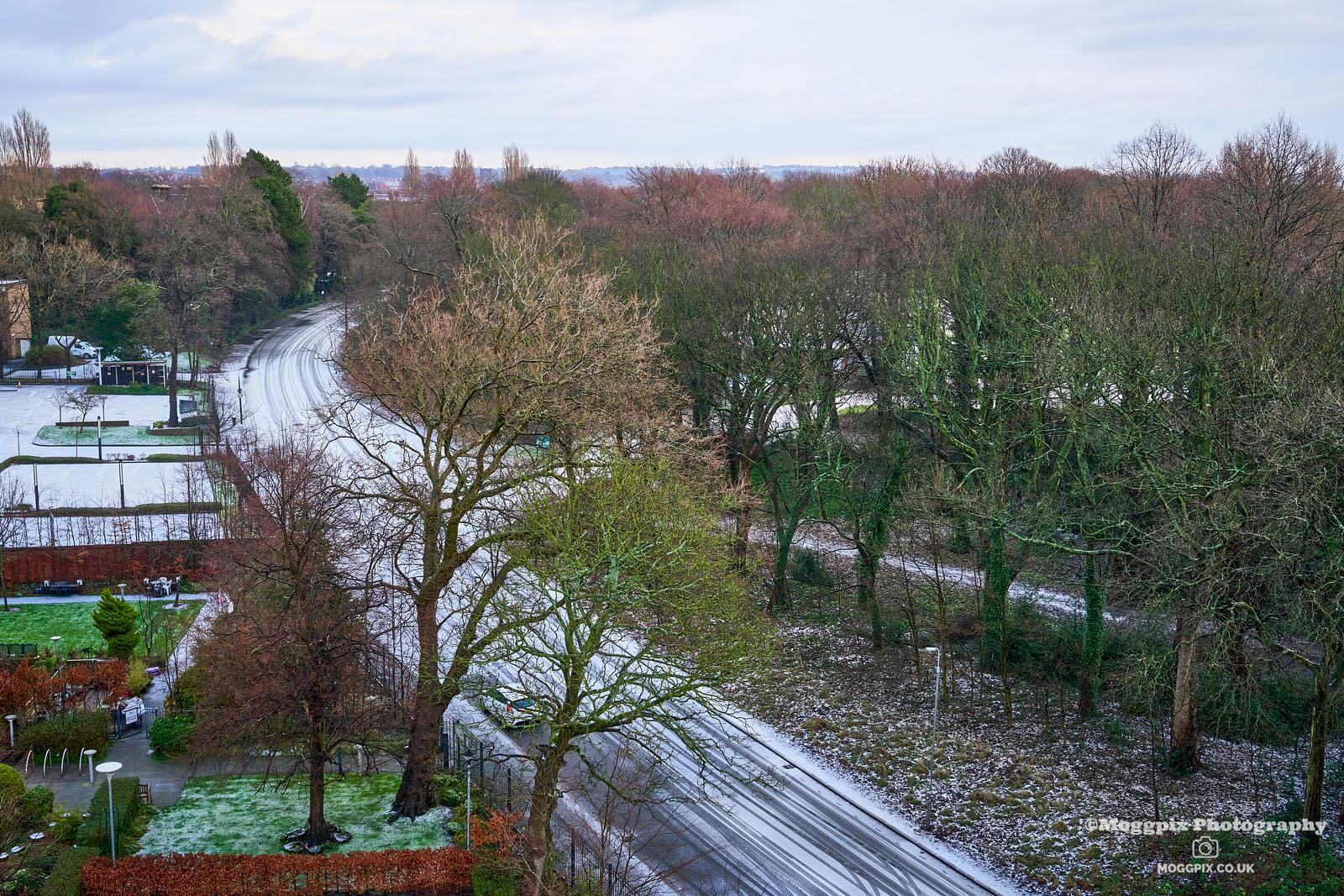 Winter at Croxteth Drive