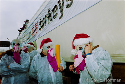 00121902-27 Protesters from the Snowball & the GenetiX anti GM food movement chain themselves to delivery trucks during a blo...