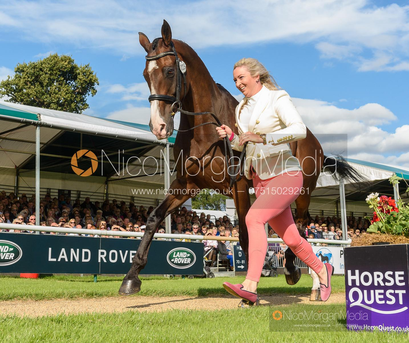 Georgie Spence and WII LIMBO at the trot up, Land Rover Burghley Horse Trials 2019