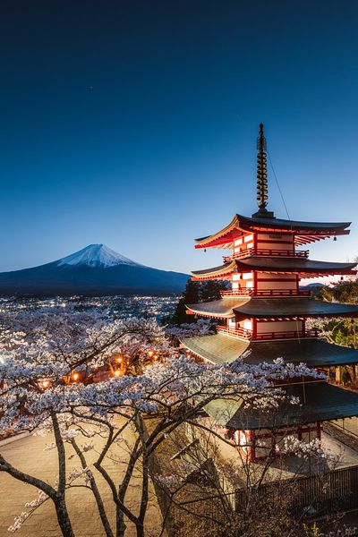 Chureito pagoda at cherry blossom season with mt. Fuji