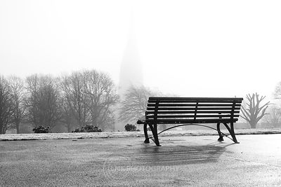 The Foggy Park View