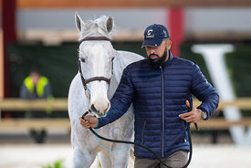 20191128 Madrid Horse Week