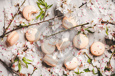 Flat-lay of sweet macaron cookies and white blossom flowers