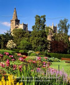 Image - Dunfemline Abbey from Pittencrieff Park, Fife, Scotland