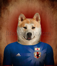 Akita Inu wearing a Japanese football jersey with the colors of the flag in the background