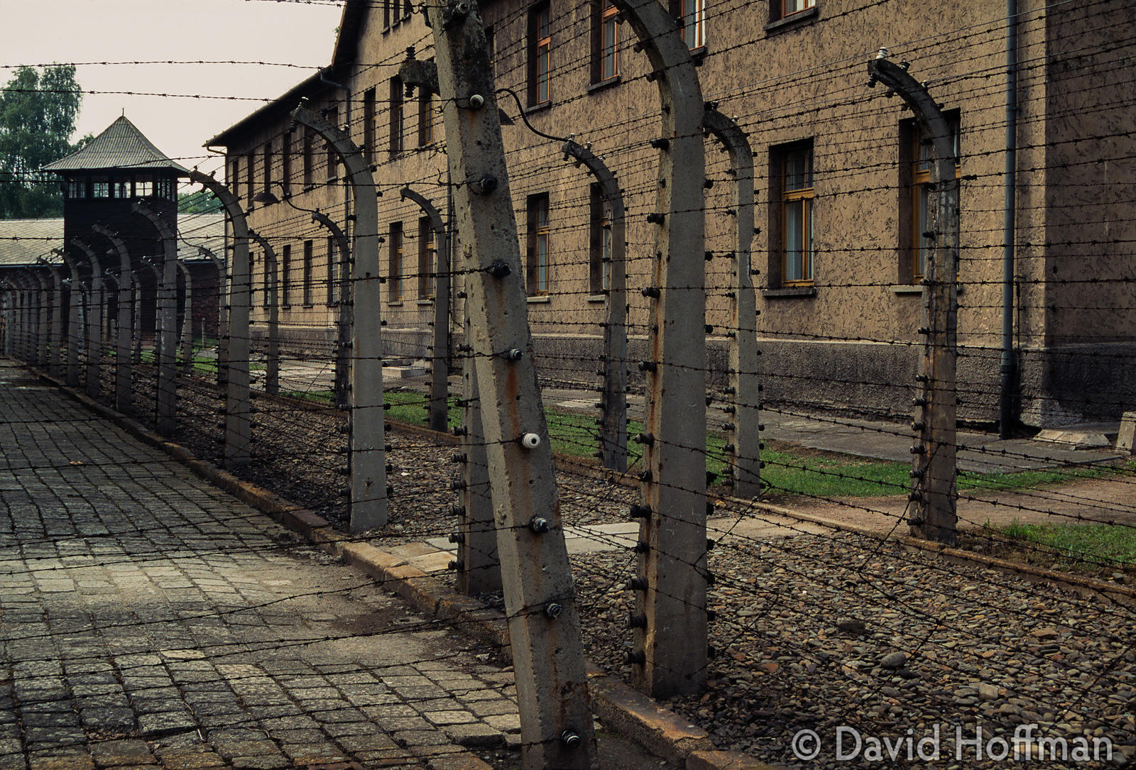1079-74 Auschwitz Concentration Camp