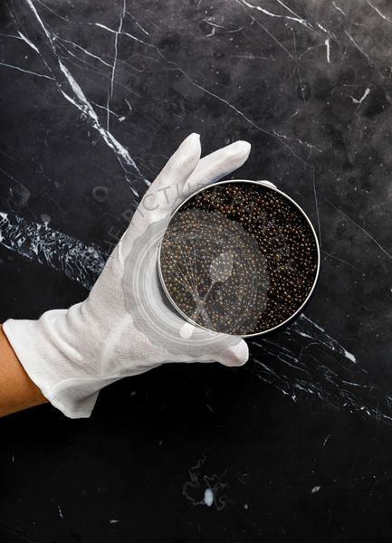 Hand in white glove holds tin can with Black caviar on black marble background copy space
