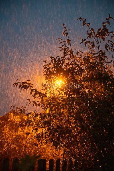 Torrential rain lit by a street lamp during a summer storm in the UK.