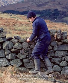 Image - Drystone waller at work repairing a field wall