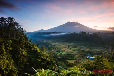 Mt Agung volcano and rice terraces at dawn, Bali