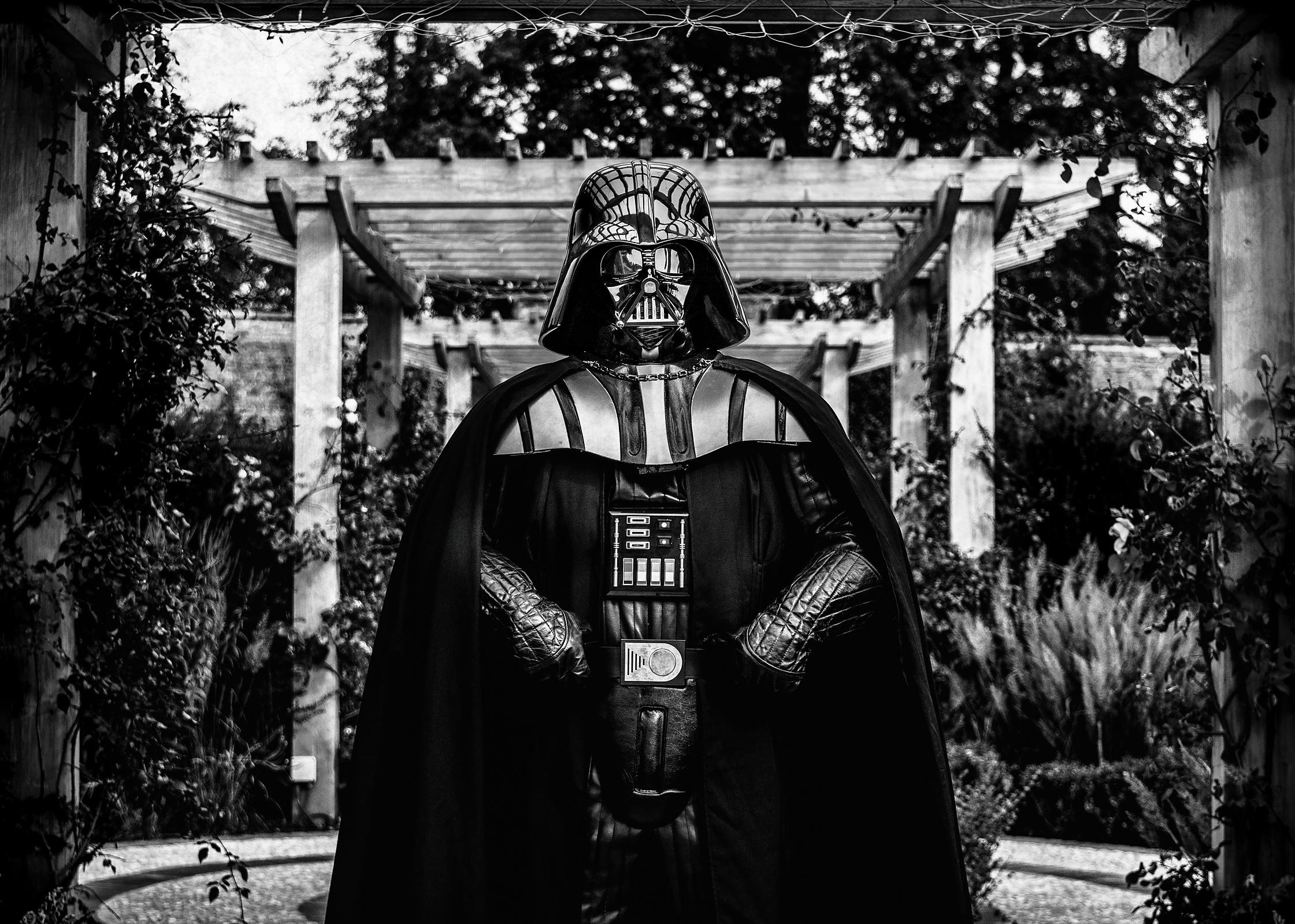 Darth_Pergola_BW_copy
