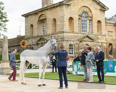 Jordy Wilken and BURRY SPIRIT at the trot up, Equitrek Bramham Horse Trials 2019