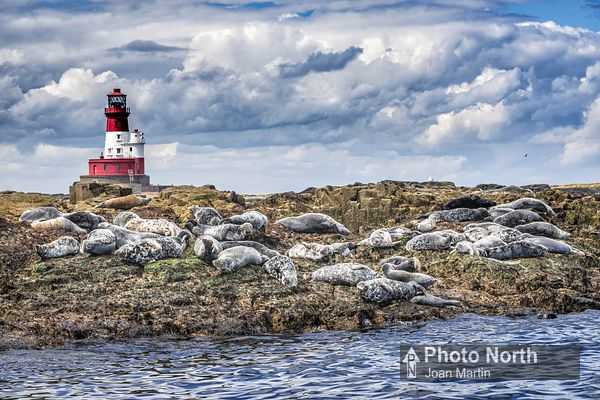 FARNE ISLAND 31A - Longstone Lighthouse