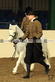Unaffiliated showing. Brook Farm Training Centre. Essex. UK. 17/12/2017. ~ MANDATORY Credit Ellen SzalaiSportinpictures - NO ...