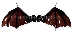 Leathered Wing